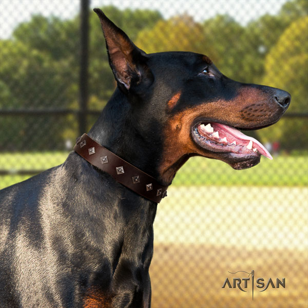 Doberman full grain leather dog collar with studs for your handsome pet