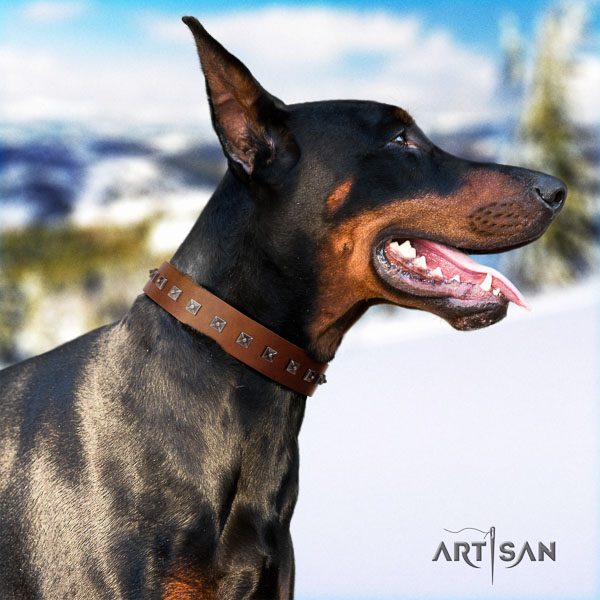 Doberman natural genuine leather dog collar with adornments for your handsome dog