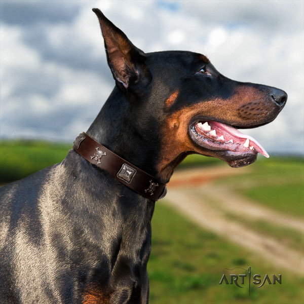 Doberman genuine leather dog collar with decorations for your impressive canine