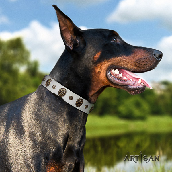 Doberman basic training full grain natural leather dog collar with adornments