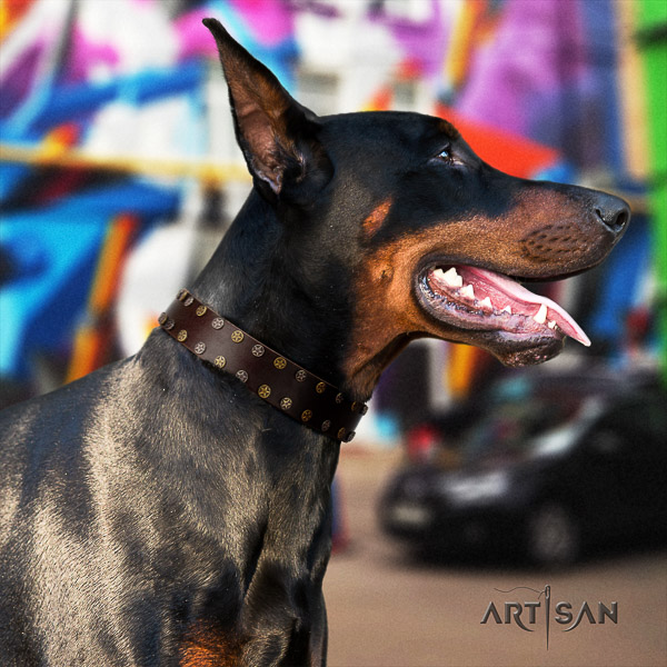 Doberman walking genuine leather dog collar with embellishments