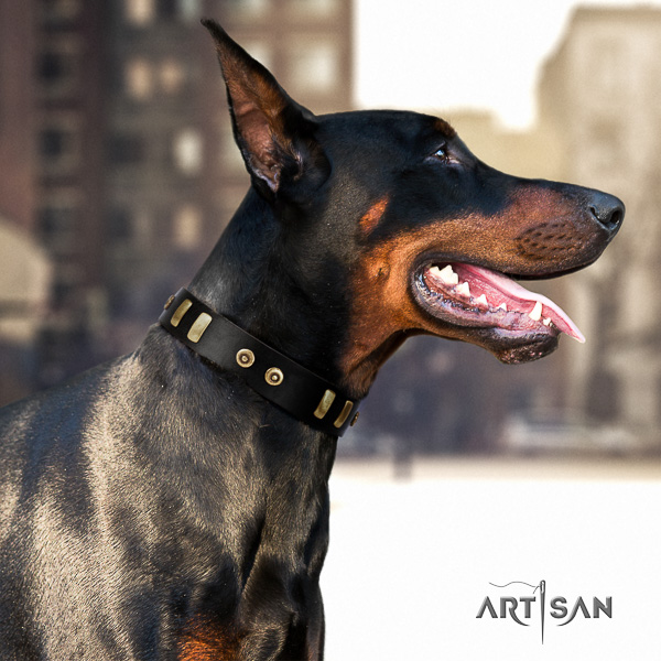Doberman daily use full grain leather dog collar with embellishments