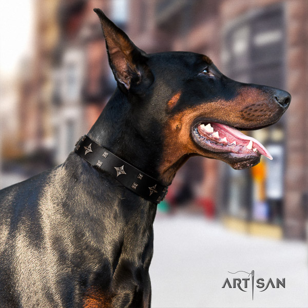 Doberman full grain genuine leather dog collar with studs for stylish walking