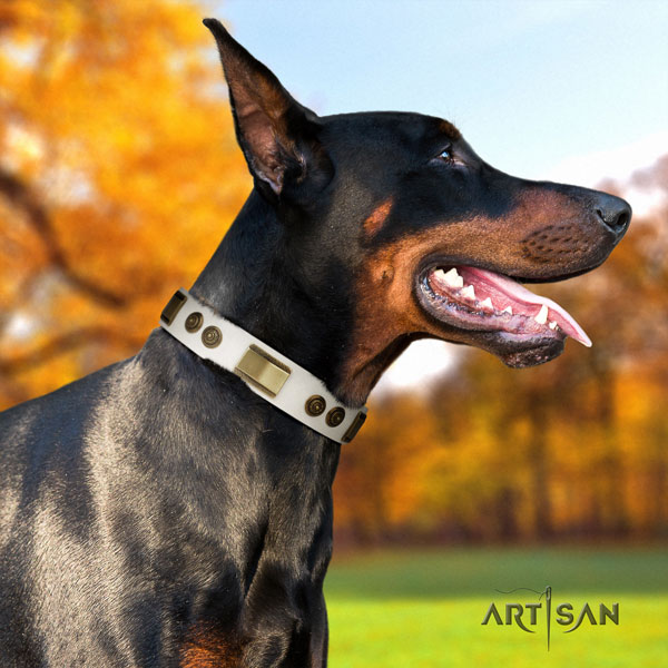 Doberman fashionable genuine leather collar with adornments for your four-legged friend