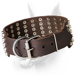 Studded Dog Collar for Doberman