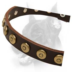 Multifunctional leather dog collar with ornament