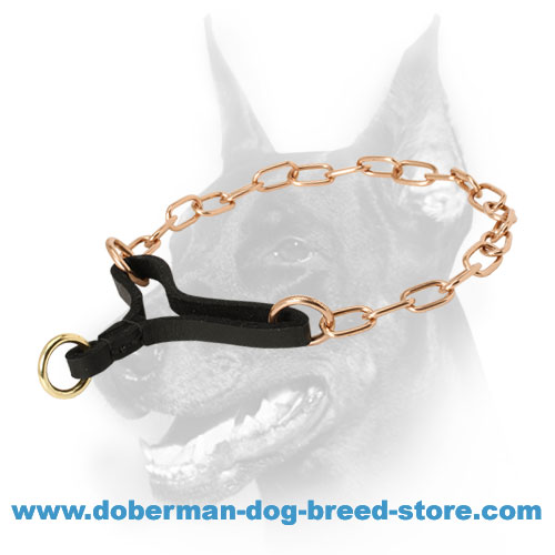 Doberman breed fur saving martingale collar