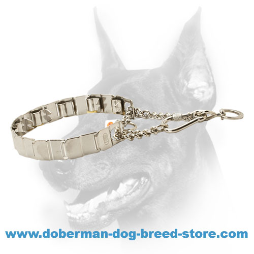 Doberman dog collar with swivel ring