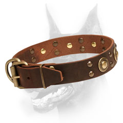 Genuine Leather Collar with Cupped rivets