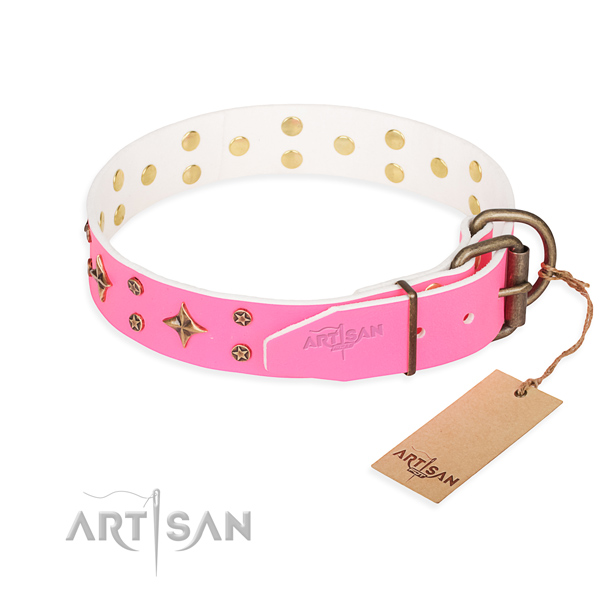 Stylish walking leather collar with decorations for your doggie