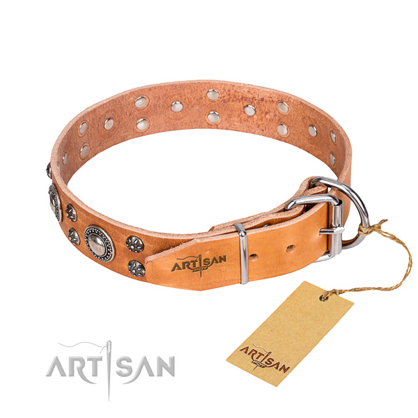 Everyday walking full grain genuine leather collar with decorations for your doggie