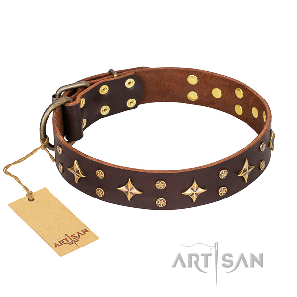 Inimitable full grain natural leather dog collar for stylish walking