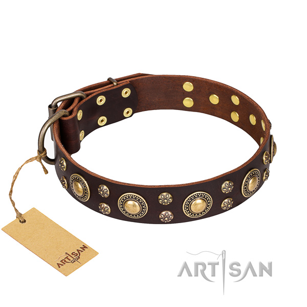 Significant natural genuine leather dog collar for everyday walking