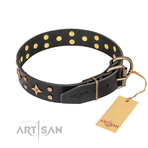Everyday use leather collar with decorations for your four-legged friend