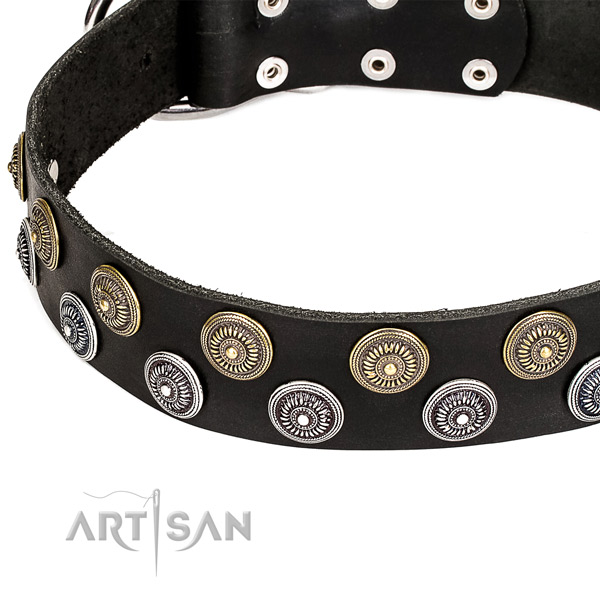 Natural genuine leather dog collar with stunning studs