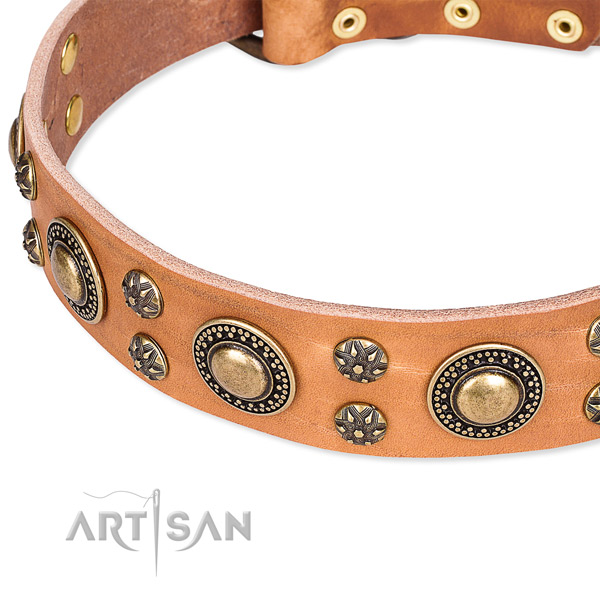 Leather dog collar with inimitable decorations