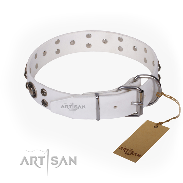 Everyday use full grain natural leather collar with adornments for your canine