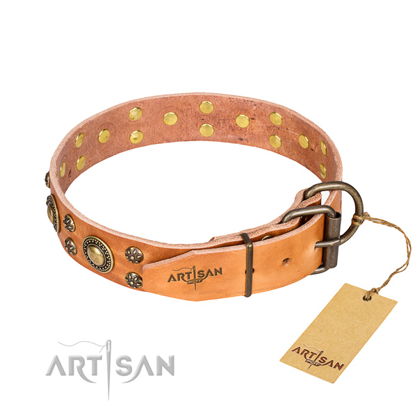 Everyday walking full grain leather collar with embellishments for your doggie