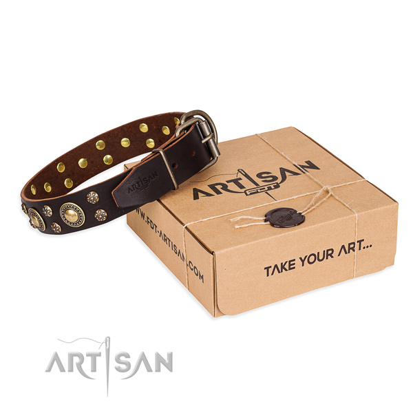 Finest quality natural genuine leather dog collar for everyday walking
