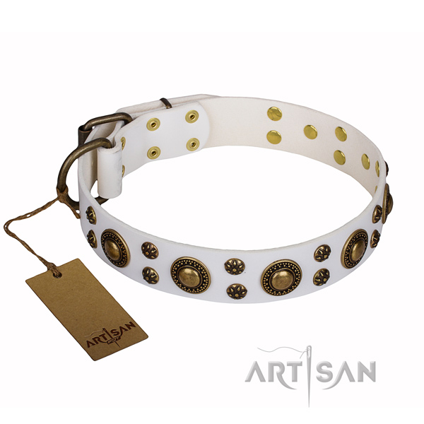 Unusual full grain leather dog collar for stylish walking