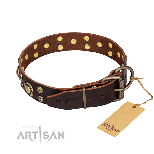 Everyday use full grain leather collar with studs for your four-legged friend