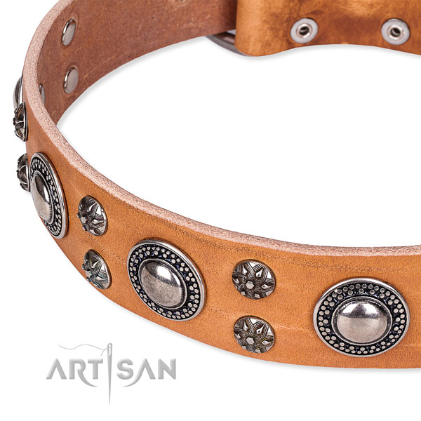 Daily use full grain natural leather collar with rust-proof buckle and D-ring