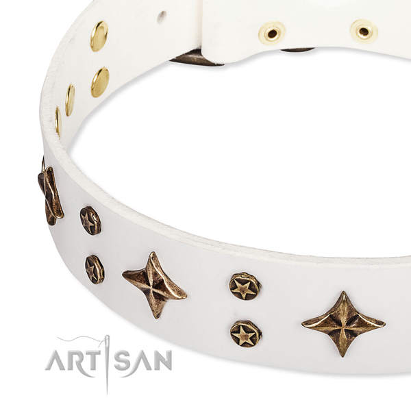 Full grain natural leather dog collar with awesome adornments