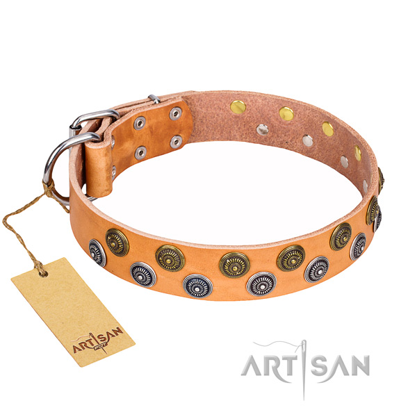 Daily use natural genuine leather collar with studs for your doggie