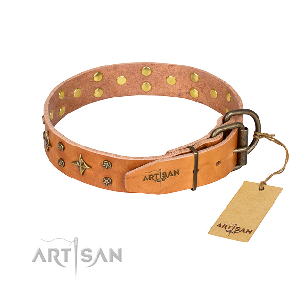 Daily walking natural genuine leather collar with embellishments for your dog