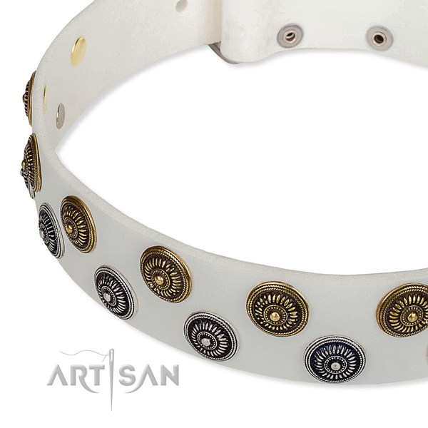 Genuine leather dog collar with extraordinary embellishments