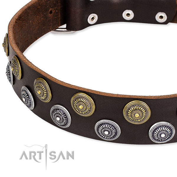Genuine leather dog collar with unusual decorations