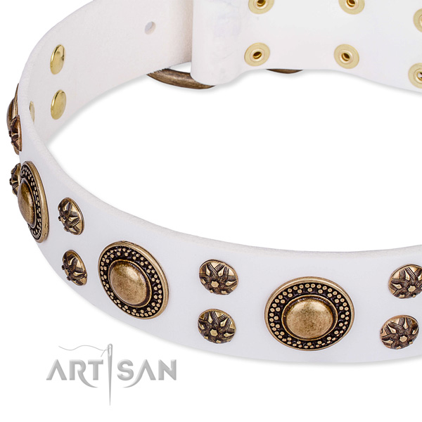 Natural genuine leather dog collar with impressive embellishments