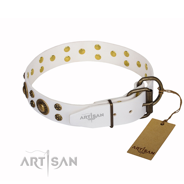 Stylish walking full grain genuine leather collar with adornments for your doggie