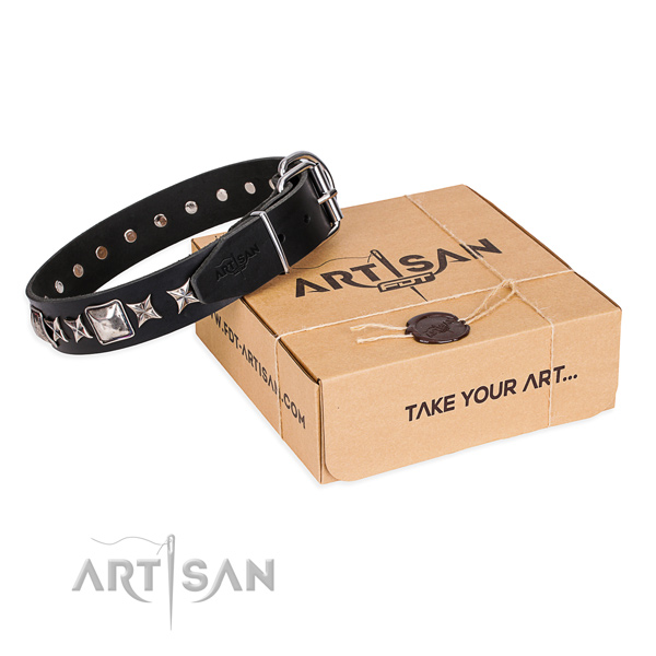 Adorned full grain natural leather dog collar for stylish walking