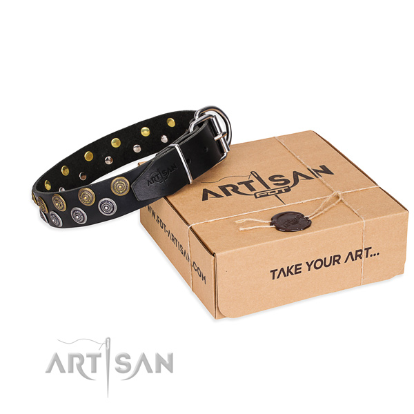 Full grain natural leather dog collar with adornments for daily walking