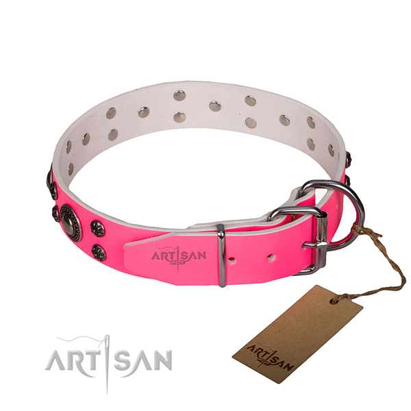 Everyday walking full grain genuine leather collar with reliable buckle and D-ring