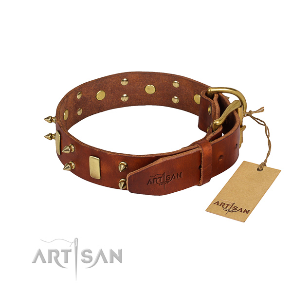 Strong leather dog collar with riveted fittings