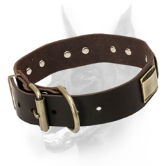 Leather Doberman Dog Collar extremely durable