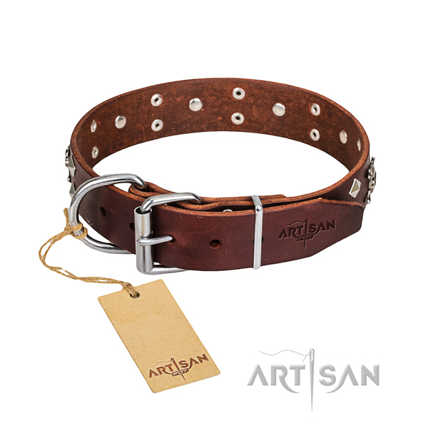 Heavy-duty leather dog collar with brass plated hardware