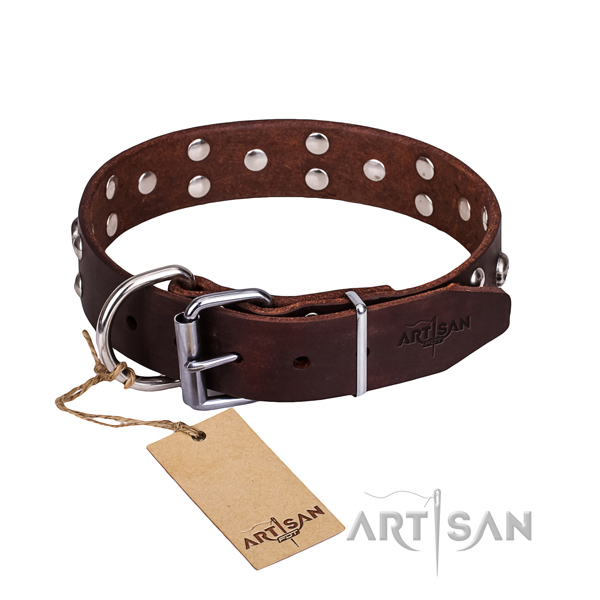 Dependable leather dog collar with durable details