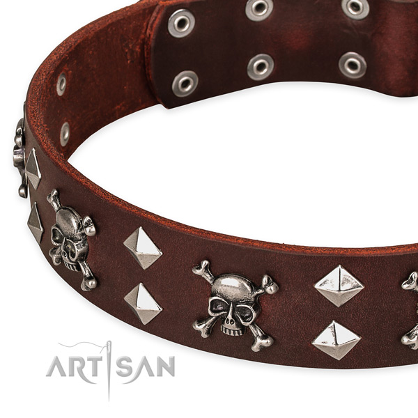 Top quality leather dog collar for reliable use