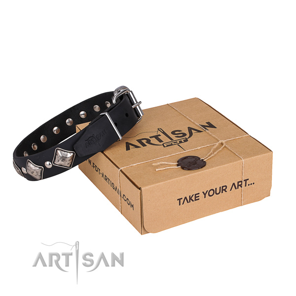 Everyday leather dog collar with astounding decorations