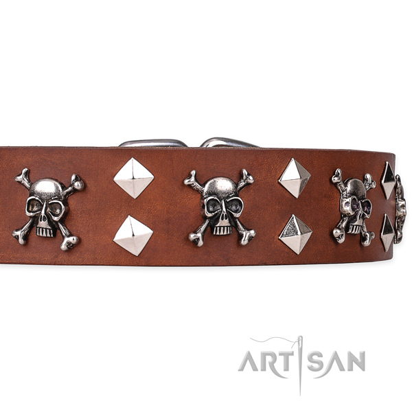 Casual style leather dog collar with refined embellishments