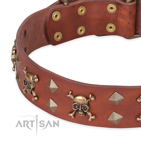 Everyday leather dog collar with luxurious adornments