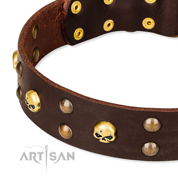 Leather dog collar with rounded edges for pleasant daily wearing
