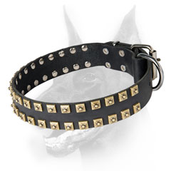 Walking leather Doberman collar with brass studs