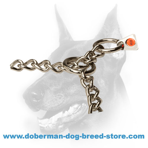 Doberman dog stainless steel collar for easy and non-painful education and walks