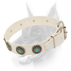 White leather dog collar for Doberman walking