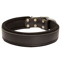 Leather dog collar padded with thick felt - doberman collar