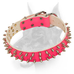 Leather pink Doberman collar triple spiked